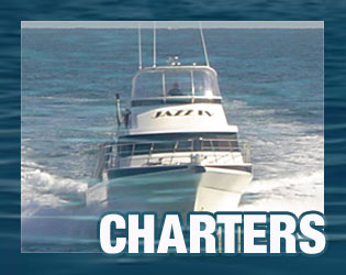 charters with Jazz charters